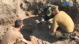 rozkop 260x146 - Розбиті шаблями і сокирами черепи, пробиті скроні: моторошна знахідка пошуковців на Житомирщині (ВІДЕО)