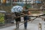 vesna 150x100 - Українців попереджають про зміну погодних умов та поступове похолодання