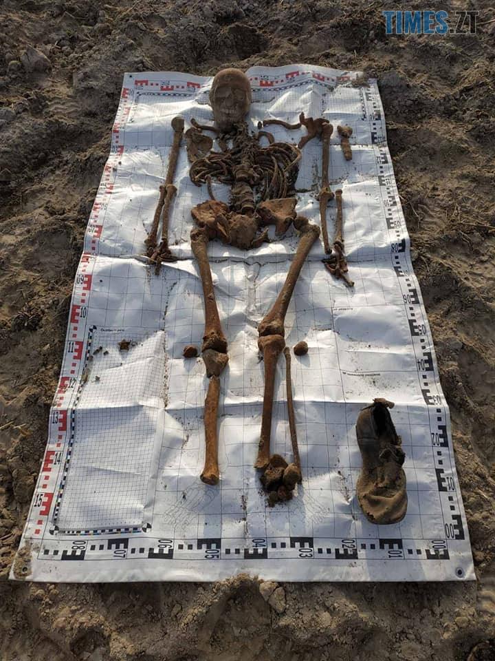 72053526 1280031925501520 4358292749078757376 n - На Житомирщині знайшли поховання невідомих солдат (ФОТО)