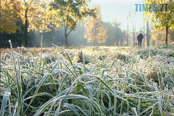 Zamorozky - На Житомирщину насувається різке похолодання: синоптики попередили про зміну погодних умов