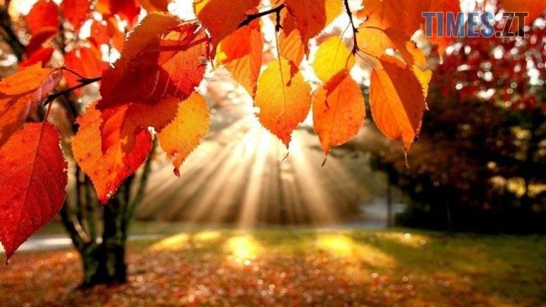 autumn 777x437 - Синоптики розповіли, яка погода очікує на житомирян цими вихідними