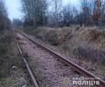 09 37 14 150x125 - Наражав на небезпеку тисячі пасажирів: на Житомирщині затримали чоловіка, який викрадав кріплення залізничних колій