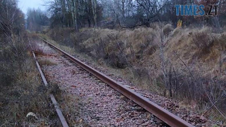 09 37 14 777x437 - Наражав на небезпеку тисячі пасажирів: на Житомирщині затримали чоловіка, який викрадав кріплення залізничних колій