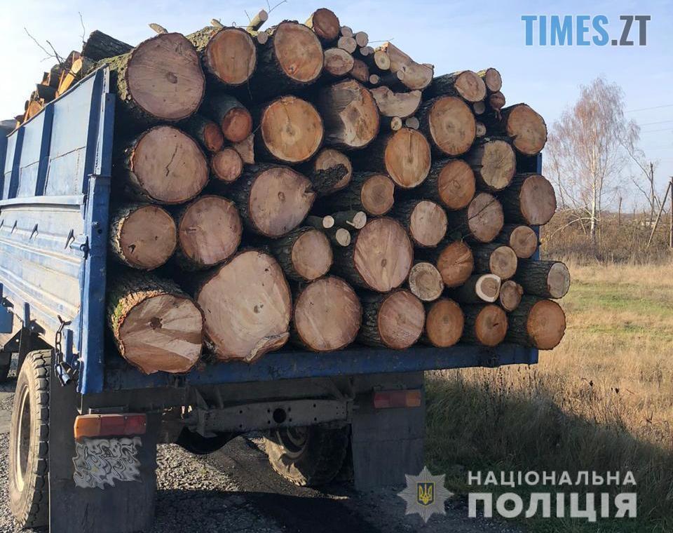 12 s - Резонансне викриття: на Житомирщині викрили підприємство, яке розкрадало ліс для масштабного експорту (ФОТО)