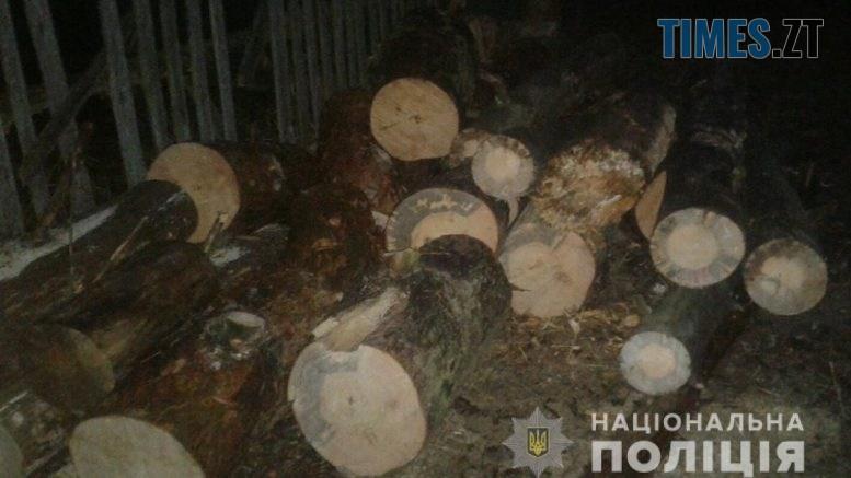 """1   777x437 - На Житомирщині копи затримали трьох """"чорних"""" лісорубів"""