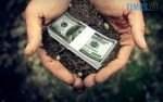 39f6e71cb66a4bca1cf61da757907cc4 M 150x94 - Фірма іноземних власників купує майже два гектари землі на Житомирщині