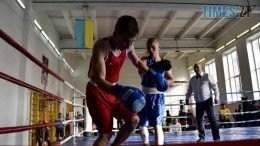 77348782 736409590174318 851223927786045440 o 260x146 - У Житомирі стартував чемпіонат з боксу серед десантників