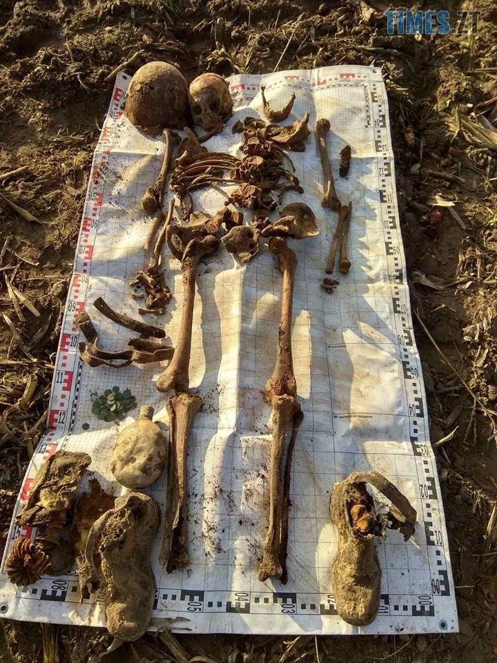 79409714 1345651608939551 1216806579039371264 o - На Житомирщині знайшли рештки 4-х солдат РСЧА (ФОТО)