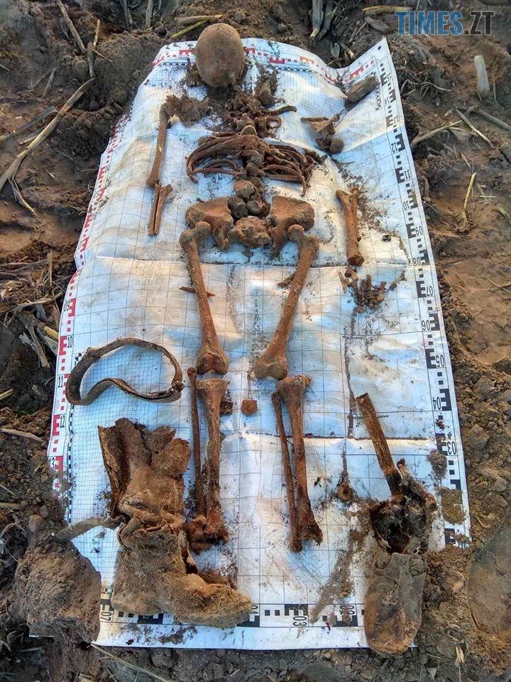 79758132 1345654728939239 2172496622703869952 o - На Житомирщині знайшли рештки 4-х солдат РСЧА (ФОТО)