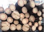 Screenshot 3 2 150x107 - На Олевщині правоохоронці затримали трактор, повністю набитий деревиною невідомого походження