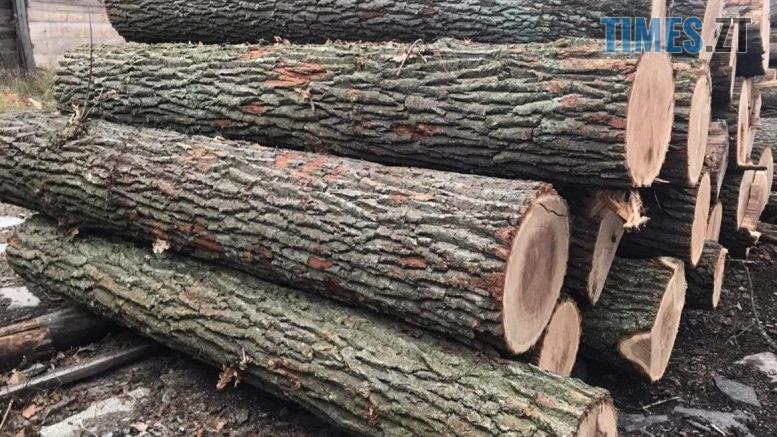 """09.10.56 777x437 - На Житомирщині """"накрили"""" підприємство, яке займалось незаконним експортом деревини за кордон (ФОТО)"""