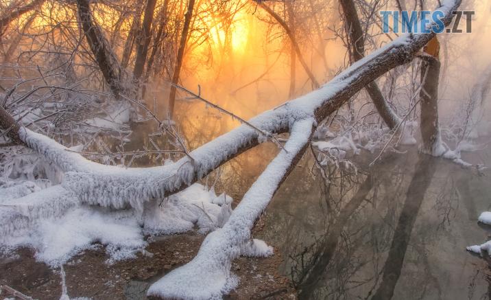Screenshot 3 6 716x437 - Моторошна смерть на Житомирщині: селяни чули пронизливі крики потопаючої, але не бачили її