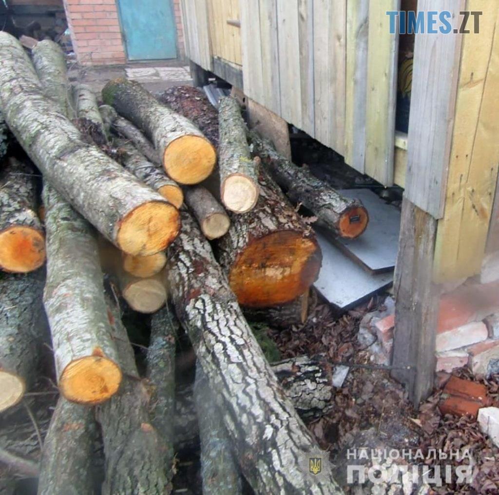 """lis Baranivka 2 1024x1015 - Крадіжка лісу на Житомирщині: копи затримали ще одну банду """"чорних"""" лісорубів (ФОТО)"""