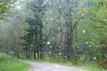 rain 2775032 960 720 1 150x100 - У найближчі дні на Житомирщині сильно зіпсується погода