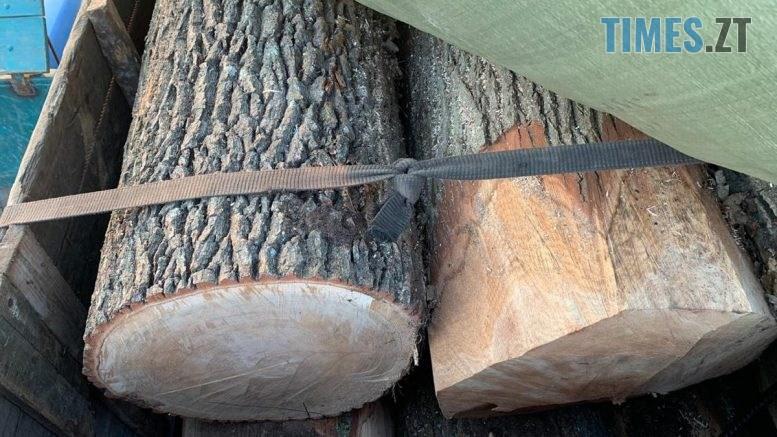 1 1 777x437 - Під Житомиром пенсіонера затримали за незаконну вирубку лісу (ФОТО)