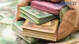 depositphotos 35392383 stock photo money bag with hryvna 260x146 - 5000 гривень винагороди: у Новограді-Волинському розшукують дебошира, що розбиває сітілайти