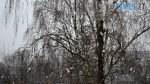 preview 2 1 150x84 - Після «літа» йде «зима»: у Житомирі нічні заморозки та сніг