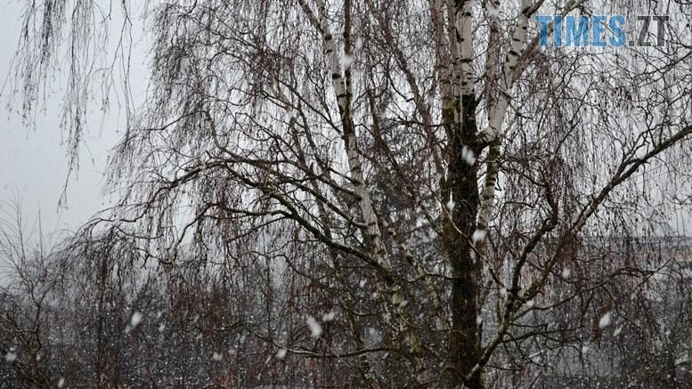 preview 2 1 - Після «літа» йде «зима»: у Житомирі нічні заморозки та сніг