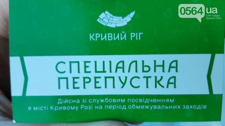 03 3 - Кретинокарантин: на батьківщині Зеленського люди збилися у натовп заради зелених папірців (ВІДЕО)