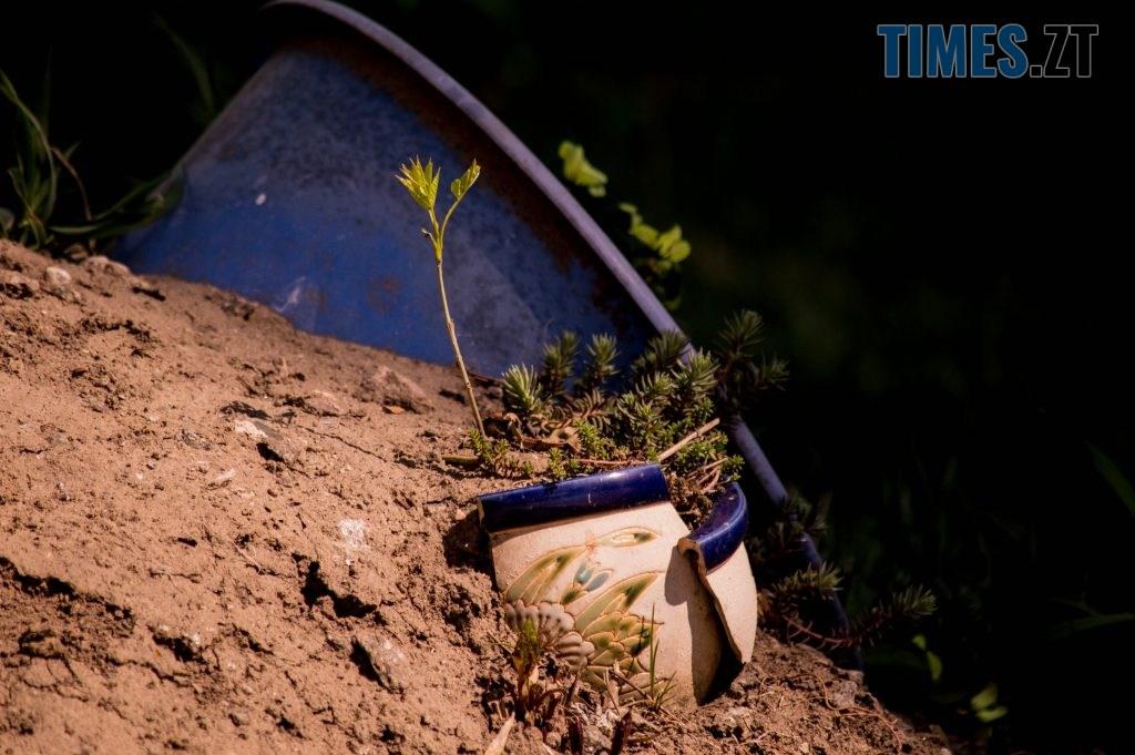 DSC 0382 1024x681 - Яка вона, весна на Житомирщині? (ФОТО)