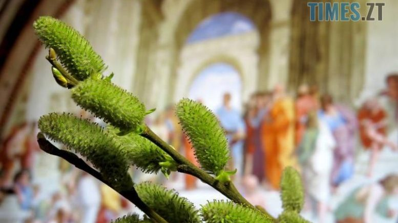 cropped 1555579564 7736 e1586530523649 - Богослужіння на Вербну неділю транслюватимуть на українських телеканалах