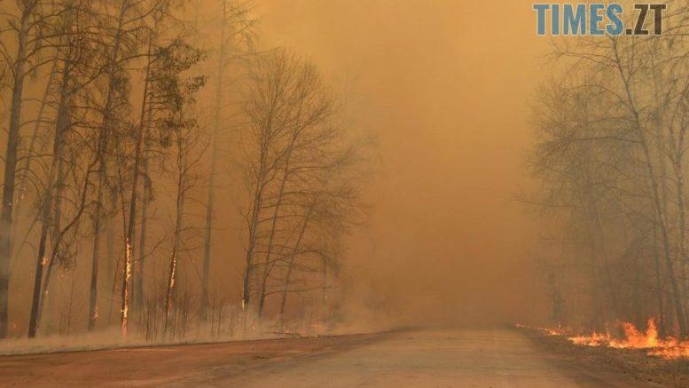 cropped 1586544342 4613 e1586874153285 - Завдяки дощу вдалось загасити пожежу в Чорнобильській зоні відчуження