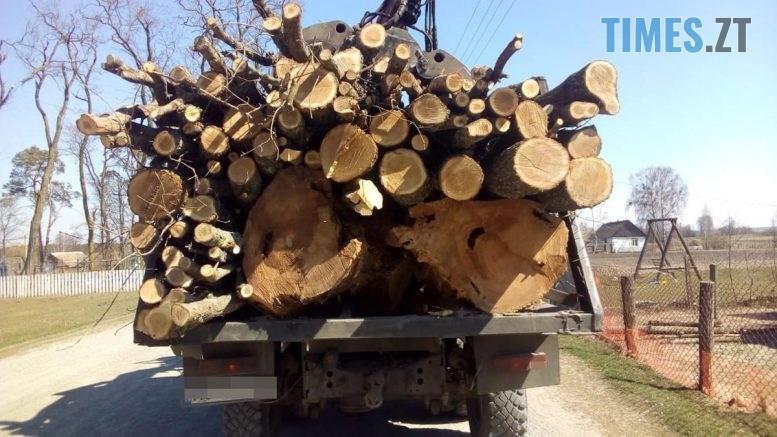 index1 777x437 - З деревиною, але без документів: на Житомирщині затримали чергового лісокрадія