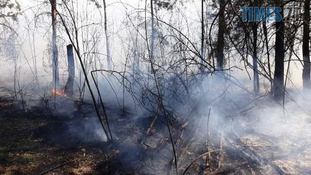 yzobrazhenye viber 2020 04 09 14 15 39 - На Житомирщині рятувальники не встигли загасити масштабну пожежу, коли поряд з`явилася нова