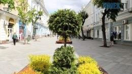 img1590135620 260x146 - У центрі Житомира встановили лавки с декоративними рослинами (ФОТО)