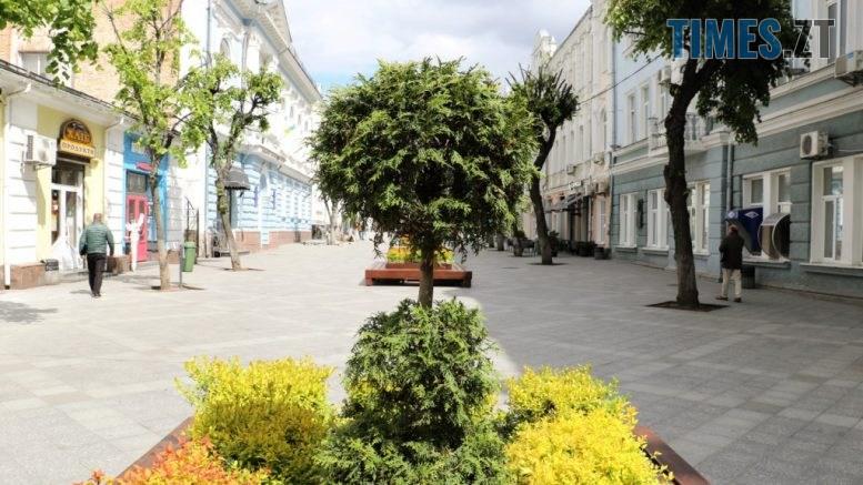 img1590135620 777x437 - У центрі Житомира встановили лавки с декоративними рослинами (ФОТО)