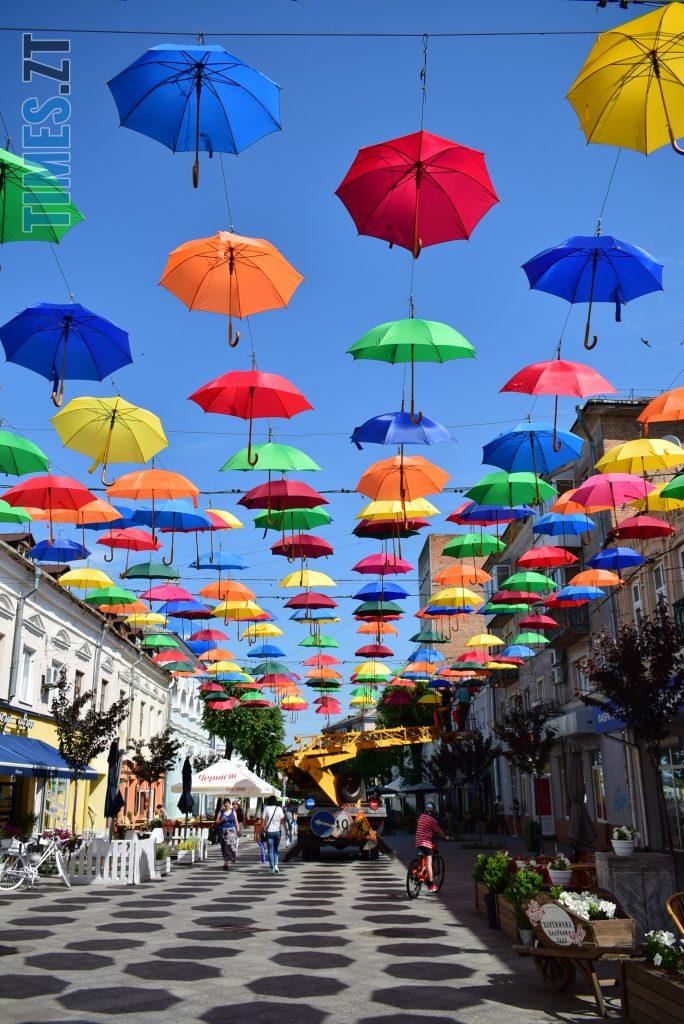 DSC 0286 e1591865790495 684x1024 - У Житомирі на Михайлівській замайоріли літні парасольки (ФОТО)