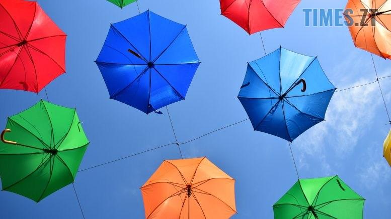 DSC 0288 777x437 - У Житомирі на Михайлівській замайоріли літні парасольки (ФОТО)