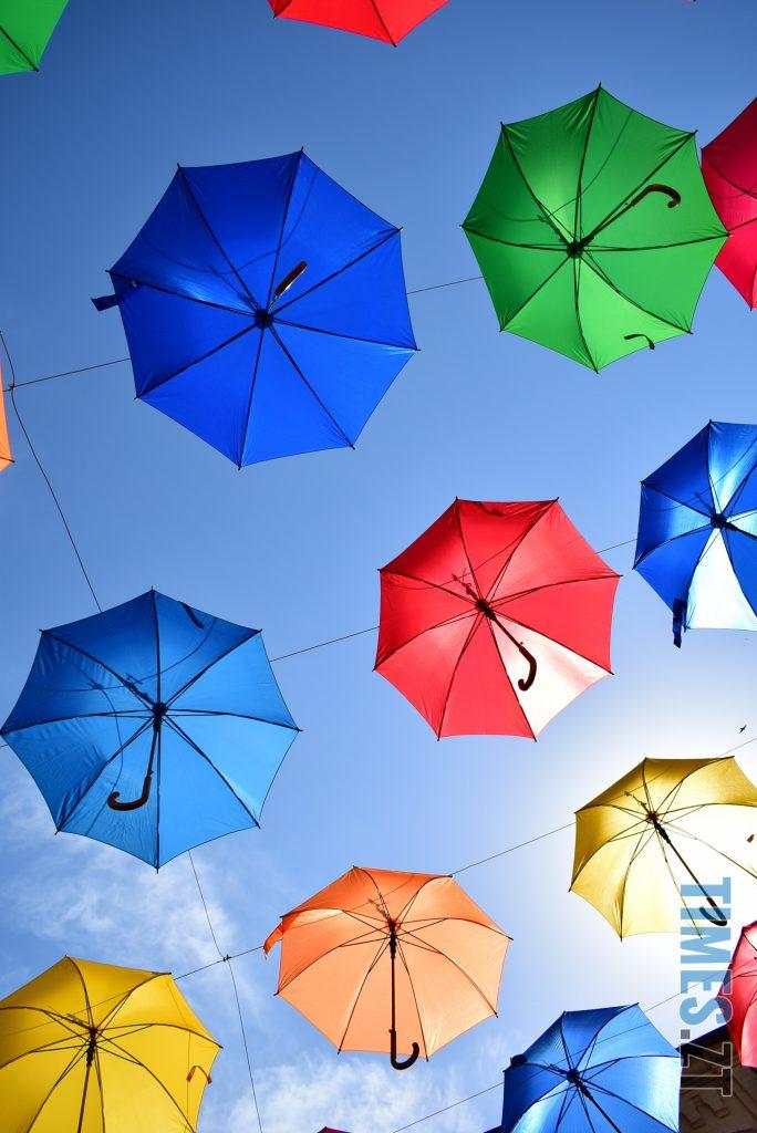 DSC 0290 e1591866020138 684x1024 - У Житомирі на Михайлівській замайоріли літні парасольки (ФОТО)