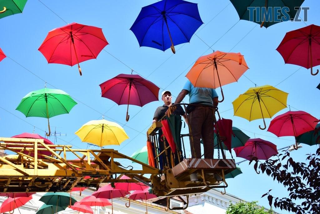 DSC 0293 1024x684 - У Житомирі на Михайлівській замайоріли літні парасольки (ФОТО)