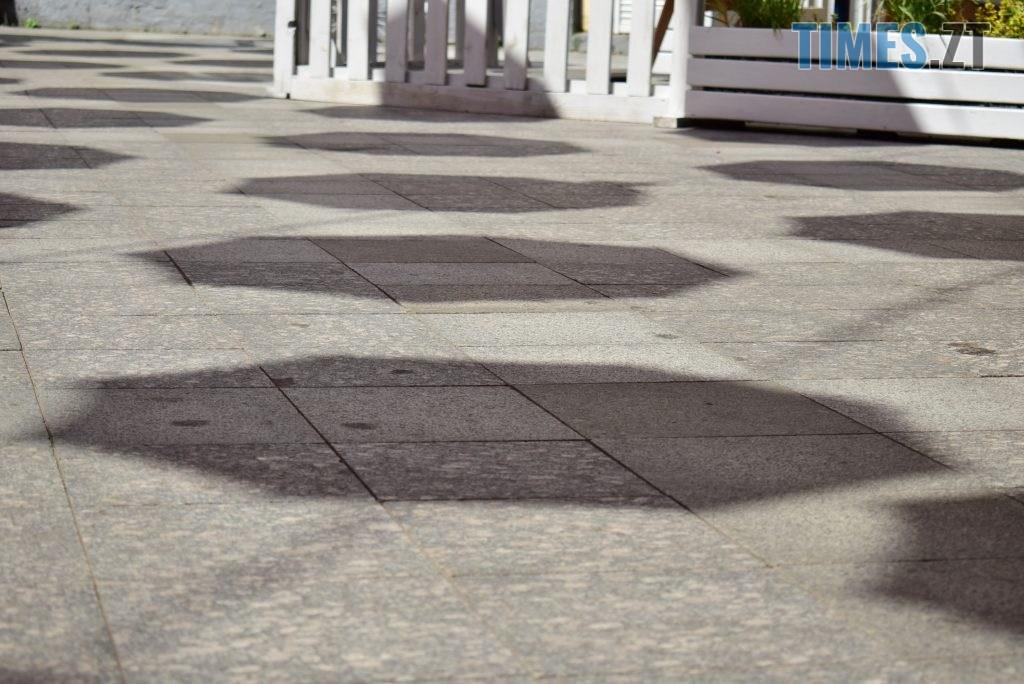DSC 0324 1024x684 - У Житомирі на Михайлівській замайоріли літні парасольки (ФОТО)