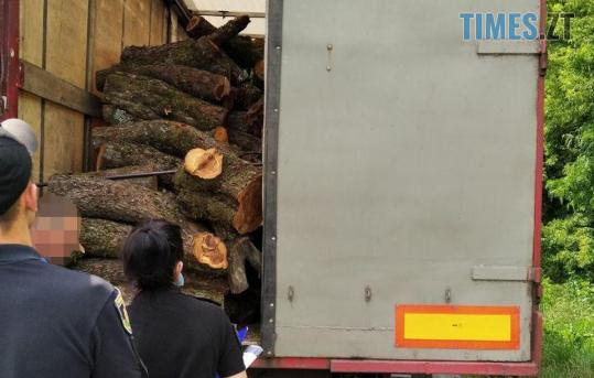 Screenshot 3 22 - Неподалік Житомира патрульні затримали вантажівку, набиту незаконною деревиною (ФОТО)