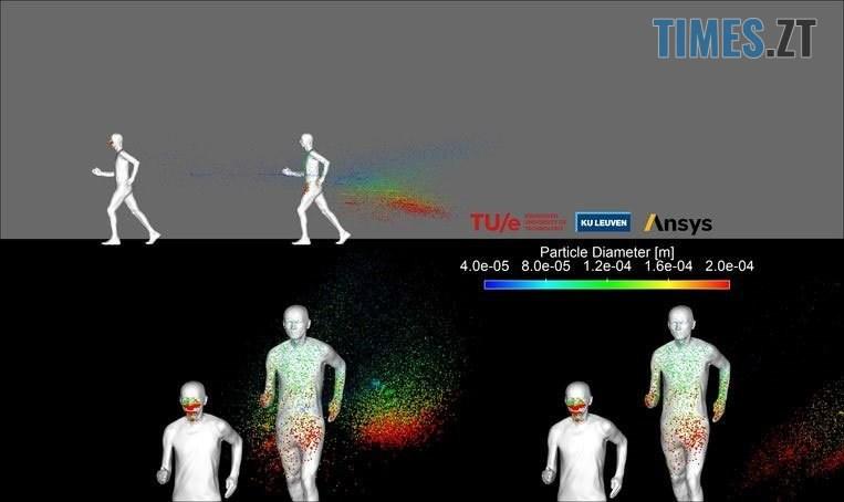 chataUV - Вчені дослідили ефективність захисту тканинних масок на хом'яках
