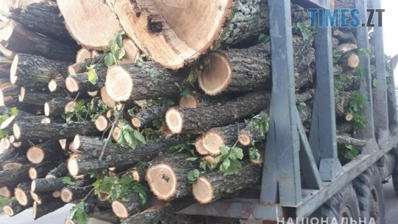 08 1 777x437 - Житомирщиною продовжують курсувати вантажівки вщент набиті деревиною невідомого походження