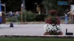 14 2 260x146 - Теракт чи дешева вистава? Терориста в Луцьку лагідно «захопили» люди без зброї і касок (ВІДЕО)