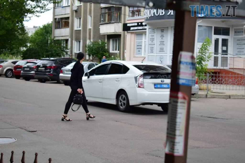 676bd432 b6d9 4fcd 8038 bc69e829ba1f 1024x684 - Повна рожа та шеврони: в Житомирі пішохідний перехід оздобили українським орнаментом (ФОТО)