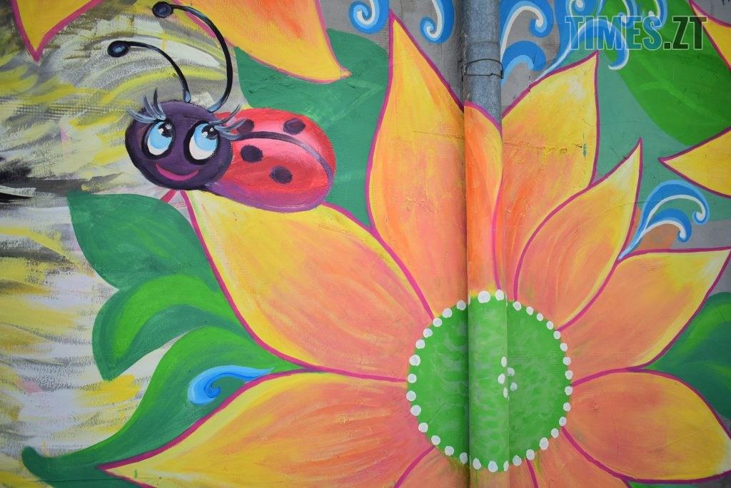 DSC 0971 1024x684 - Синьо-жовтий кіт, фруктовий сад та мистецькі вікна: у Житомирі з'явився новий арт-фасад (ФОТО)