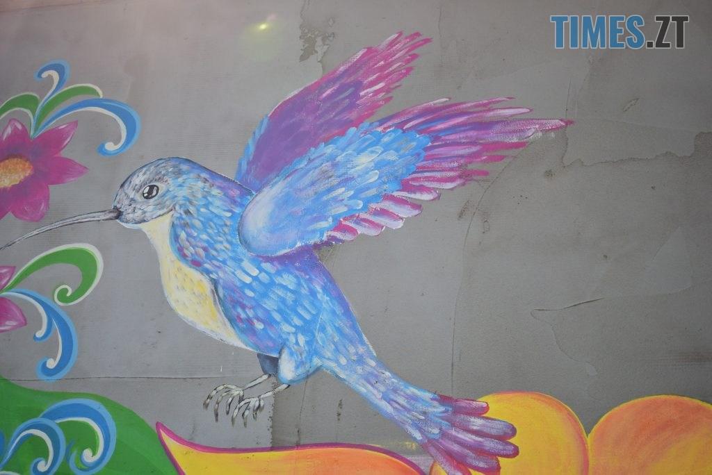 DSC 0976 1024x684 - Синьо-жовтий кіт, фруктовий сад та мистецькі вікна: у Житомирі з'явився новий арт-фасад (ФОТО)
