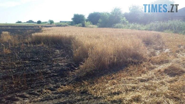IMG 8023 777x437 - У Бердичівському районі надзвичайники ліквідували загоряння зерна