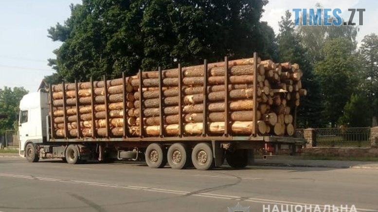 LIS2 777x437 - Вантажівку із майже півсотнею кубометрів незаконно зрізаної деревини виявили поліцейські на дорозі в Радомишлі