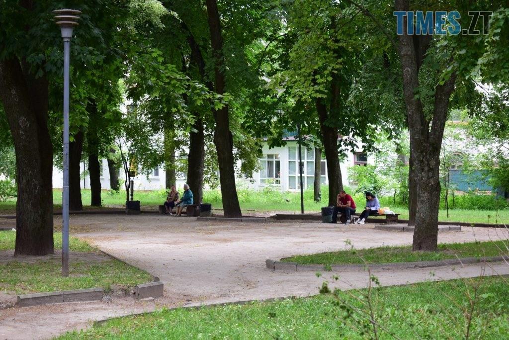 b37be863 ef71 40d9 968a c9272cd812b2 1024x684 - Повна рожа та шеврони: в Житомирі пішохідний перехід оздобили українським орнаментом (ФОТО)