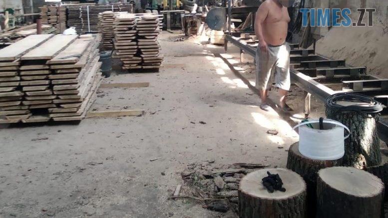 index  1 777x437 - Підприємця з Чуднівщині підозрюють у незаконних оборудках по вирубці лісу