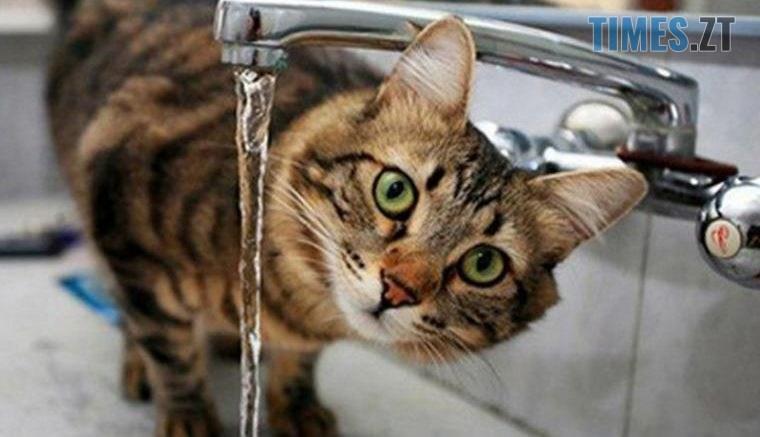 nemaje vodi1 1 760x437 - Де у Житомирі відключать воду 22 липня, - водоканал