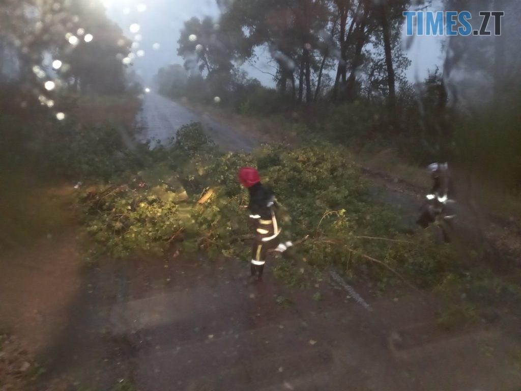 01 5 1024x768 - «Повалені дерева, місячна норма опадів та знеструмлені села»: на Житомирщині вирувала негода (ФОТО)