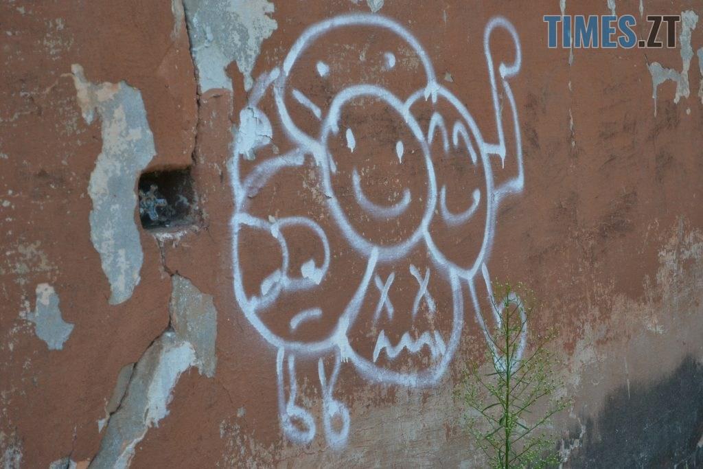 03038e1d 6c4d 4a0e be2c 353aa0ab29c6 1024x683 - Хулігани малюють, поліція - бездіє: історія занедбаності житомирських фасадів та парканів