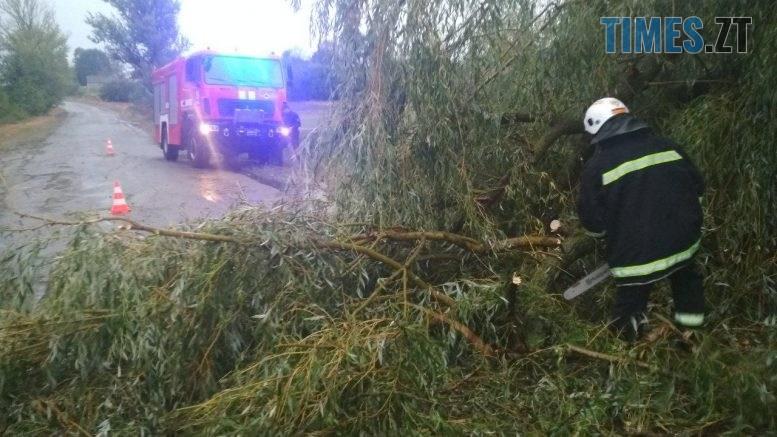 04 4 777x437 - «Повалені дерева, місячна норма опадів та знеструмлені села»: на Житомирщині вирувала негода (ФОТО)